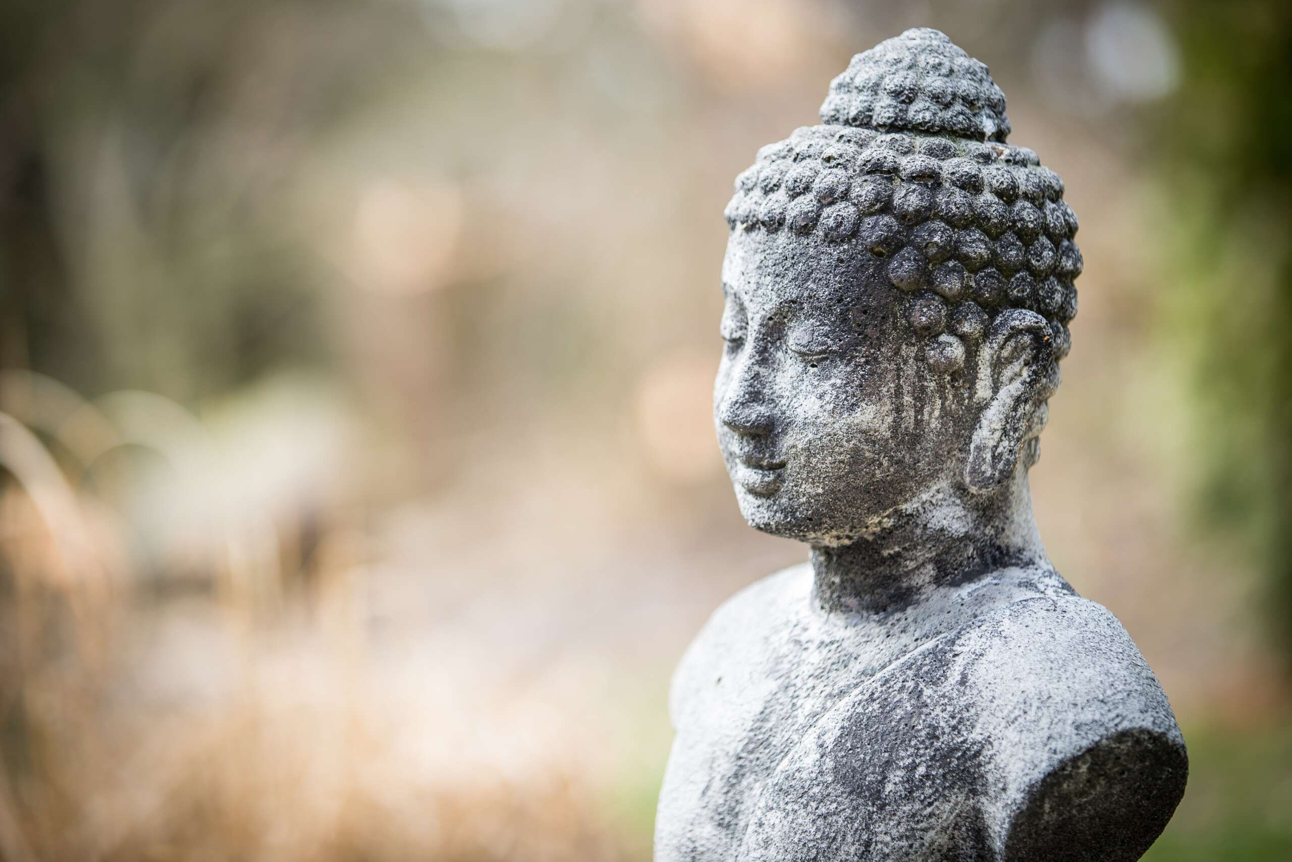 5 Tips for BEFORE Your Meditation
